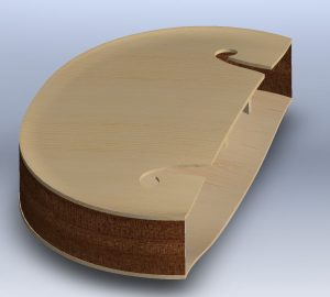 Archtop.sw.6